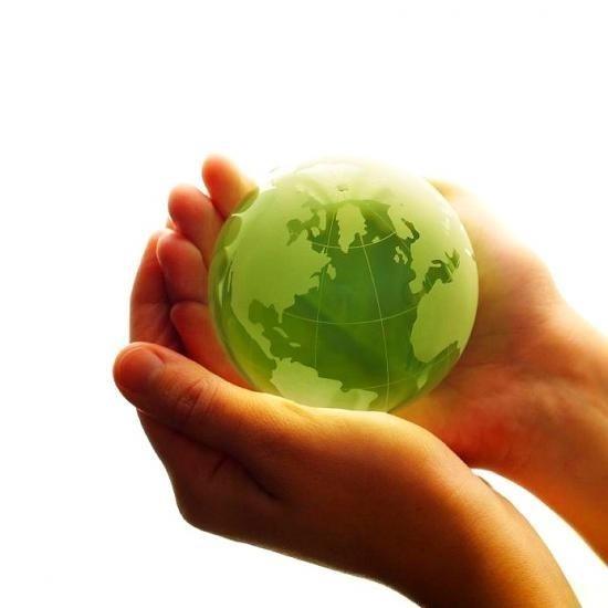 Focus sur nos produits écologiques